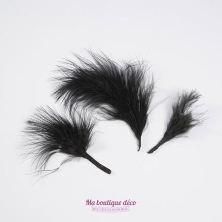 sachet plumes noires