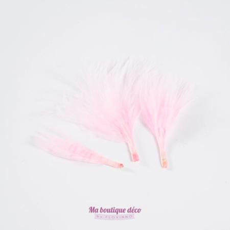 sachet plumes rose