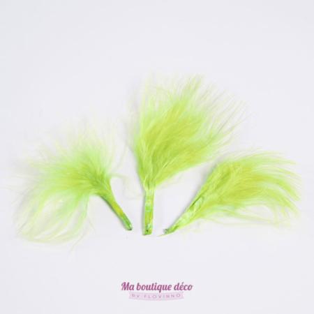 plumes vertes