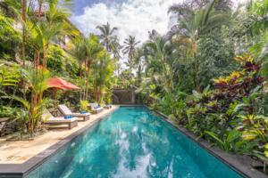 Piscine sous les palmiers à Bali