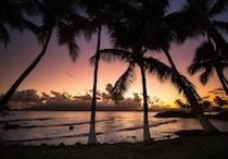 Mariage aux Antilles